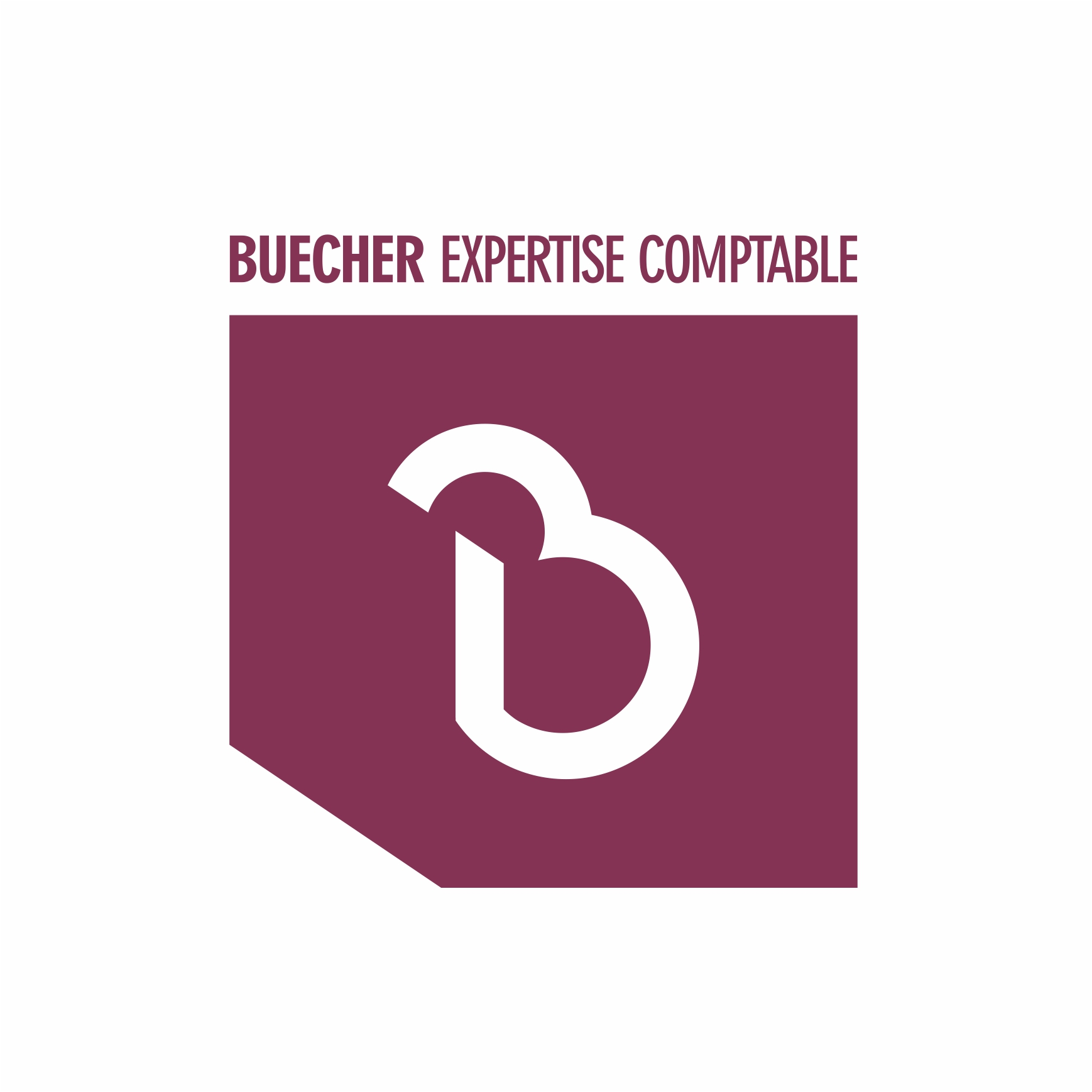 Logo Buecher Exepertise comptable